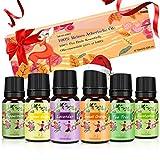 Ätherische Öle für Diffuser - Aromatherapie Duftöl Geschenk Set 100% Naturrein Reines Top 6, Lavendel, Teebaum, Pfefferminze, Zitronengras, Eukalyptus, Orange MEHRWEG
