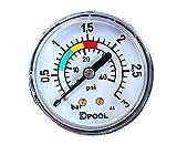 well2wellness Pool Manometer/Wasser Druckmesser 1/8 Zoll (022524)