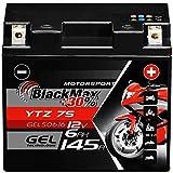 BlackMax YTZ7S Motorradbatterie GEL 12V 6Ah TTZ7S-BS Batterie YTZ7-S GEL12-7Z-S