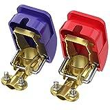 AUTOUTLET 2X KFZ Auto Batterie Schnellklemmen Polklemmen Batterieklemmen Batteriepolklemmen Set Boot PKW Klemmen (1 Paar)