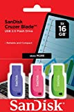 SanDisk 16GB Cruzer Blade USB Flash Drive 3-pack