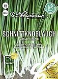 Schnittknoblauch Wagners Kobold, mehrjährig, wüchsig, gesund, Samen