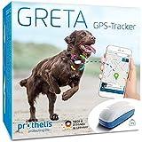 Greta 090148-02 GPS Tracker für Hunde, Katzen, Kinder und Wertgegenstände, Hundetracker Liveortung + Warnsystem per APP, Peilsender Wasserdicht,genaue GPS Ortung,32g leicht, Made in Germany