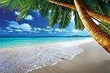 GREAT ART Fototapete – Strand Palmen – Wandbild Dekoration Karibik Traumstrand Bucht Paradies Natur Insel Palmen Tropen Blauer Himmel Sommer Foto Wandtapete Fotoposter Wanddeko (210x140 cm)