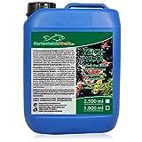 GartenteichDirekt Teichklar Teichklärer für den Gartenteich 5 Liter (GRATIS Versand in DE - Klärer gegen grünes und trübes Teichwasser, klares Wasser)