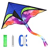 Anpro Drachen für Kinder und Erwachsen, Flugdrachen Drachen Einleiner mit langem Schwanz inkl. 30m Drachenschnur, ideal für Anfänger Erwachsene, Kinder ab 3 Jahren, 146 x 73cm
