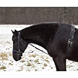German Riding Chambon schwarz Cob/Full