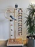 Kletterbaum aus Holz, Papageien-Freisitz HÄNGEBRÜCKE Papageienspielzeug 1,40