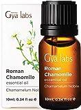 Gya Labs Ätherisches Öl aus Römischer Kamille - Entspannung für Stressfreie Tage - Gesunde Haut (10ml) - 100% Rein Ätherische Öle aus Kamillenöl für Aroma Diffuser und Äußerliche Anwendung