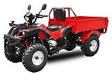 Aufgebaut Jinling 200cc Dumper Automatik + RG | CVT Getriebe | Ladefläche | Zuladung (Schwarz)