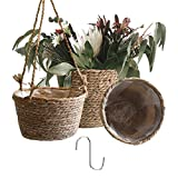 Seegras Blumentopf 3er Set, Hänge Pflanzentopf für Drinnen Draußen Übertopf 1 Stück, Pflanzenkörbe 2 Stück