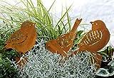 LB H&F Lilienburg Roststecker Gartenstecker Rost Metall (Vogel Set)
