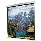 celexon manuell ausziehbare Heimkino- und Business-Rollo-Beamer-Leinwand 4K und Full-HD mit Slow-Return Professional Plus - 200 x 200 cm - 1:1