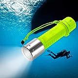 TR Turn Raise 1100LM LED wasserdicht Unterwassersport Tauchgang Tauchlampe Taschenlampen für Tauchen mit Handschlaufe