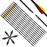 Narchery 12 Stück Pfeile für Bogenschießen, 31 Zoll Carbonpfeile Bogenpfeile mit Kunststoffbefiederung, Jagdpfeile für Bogen, Recurvebogen, Langbogen und traditionellen Bogen