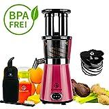 NUTRILOVERS Slow Juicer Entsafter mit 2 Einfüllöffnungen | Elektrische Obst & Gemüse Saftpresse | BPA-Frei | Geringe Drehzahl nur 60 U/min - 350 Watt | Glas-Trinkflasche & Reinigungsbürste