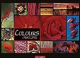 Colours of Nature. Wandkalender 2020. Monatskalendarium. Spiralbindung. Format 68 x 49 cm