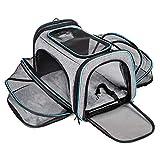 BERTASCHE Tragetasche für Katze Hund Transporttasche Reisetasche für Auto Flug
