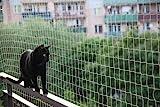 Balkonnetz für Katzen und Vögel, 5x 5m + 50FastNet + 1Tube, Silikon 80ml