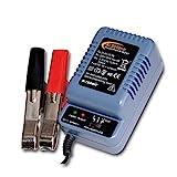 Batterie- Automatik-Lader AL 300 pro f. 2-6-12V Batterien