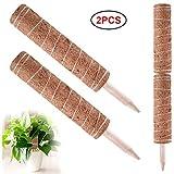 Pflanzstab Kokos,2 Stück Blumenstab Kokosstab Verlängerbar Rankstab Natürlicher Kokosfaser Stützpfahl Für Haus Garten Kletterpflanze Erweiterung Der Pflanzenstütze