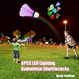 6 Stück LED Badminton Bälle Federbälle, Mit EIN/Aus-Taste, Ball Badmintonbälle Shuttlecocks Beleuchtung, Federball Beleuchtung Für Outdoor En Indoor Sport Training Sportsaktivitäten (MulticolorA)