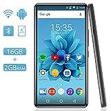 WiFi MP4 Player mit 6'' Touchscreen, AGPTEK HD Videoplayer mit Android 6,0 für UKW-Radio, Online-Funktionen usw, Bluetooth 4.2 Musik Player 2GB RAM, 16GB ROM, bis zu 128GB TF-Karte, 2000mAh Akku, Grau