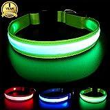 MASBRILL Wiederaufladbar LED Hund Halskette Halsband perfekt für Haustiere Hund - Wasserdicht (L, Grün)