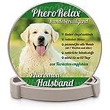 PheroRelax Pheromon Hundehalsband für Hunde - Anti-Angst Halsband - natürliches Beruhigungsmittel klein und leicht für Welpen und Erwachsene Hunde. Ideal für Hundeerziehung 60 Tage Wirkzeit