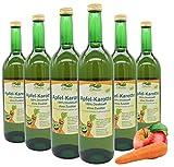 Bleichhof Apfelsaft mit Karottensaft - 100% Direktsaft, naturrein und vegan, OHNE Zuckerzusatz, 6er Pack (6x 0,72l)