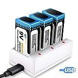 9V Batterie Ladegeraet, Keenstone 3 St. 9V PP3 Li-Ion Block aufladbare Akku Batterien & 3 Slots Ladegeraet, 800mAh, mit USB-Ladekabel, Ideal Fuer Melder