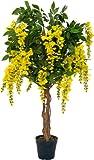 McPalms Goldregen 1,10 m künstlich Kunstbaum Kunstpflanze Echtholzstamm