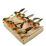 """Yolococa """"Vogel"""" Weihnachtsbaum-Dekoration, Kunsthandwerk, künstliche Federn, Orange, Größe S"""