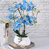 VIVILINEN Künstliche Blume im Topf Orchideen Kunstpflanze Deko Kunstblumen Phalaenopsis für Büro Balkon Wohnzimmer (Blau)