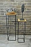 Livitat Beistelltisch Satztisch Pflanztisch H66 cm Pflanzsäule Säulentisch Metall LV5016