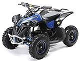 Actionbikes Motors Mini Kinder Elektro Quad ATV RENEBLADE 1000 Watt Pocket Quad - Original Saefty Touch Fußschalter - 36 Volt - Kinder Pocketquad (Schwarz/Blau)