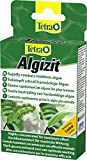 Tetra Algizit (vordosiertes Algenmittel mit schneller Biozid- Wirkung), 1er Pack (1 x 10 Tabletten)