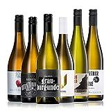 GEILE WEINE Weinpaket GRAUBURGUNDER (6 x 0,75) Probierpaket mit Grauburgunder Weißwein und Roséwein aus Deutschland