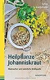 Heilpflanze Johanniskraut: Mutmacher und natürliche Kraftquelle