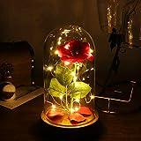 OSALADI Schöne und das Biest Rose erhalten romantische Rose verzauberte Rose mit LED-Licht in Glaskuppel auf Holzsockel für Muttertag Valentinstag Weihnachtsgeschenke