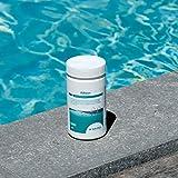 BAYROL Adisan Poolreiniger Randreiniger - Poolfolie - Poolüberdachung - Rolladenabdeckung  - 1 kg