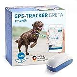 Prothelis Greta GPS Tracker Hund Mini 32g leicht | GPS Tracker für Hunde wasserdicht bis 10m | Peilsender für Hunde mit App Made in Germany weltweiter Einsatz | Hunde GPS Tracker klein