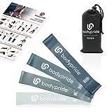 BODYPRIDE Premium Fitness Loop Bands | Fitnessbänder [ 4er Set ] Widerstandsbänder Unisex Set Anthrazit | Reißfester Kautschuk | Resistance Bands + Transportbeutel | Workout-Poster + E-Book