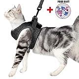 Katzengeschirr Set mit Leine für Autofahren & Spaziergang, zum Gehen 360 °Katzenleine mit Geschirr für Katzen Kitten Katzengarnitur Kleine Katze Cat Harness Kaninchen mit kationischem Stoff (M, grau)