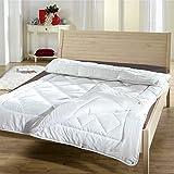 Betten Duscher Trennbare 4-Jahreszeiten Bettdecke, Ganzjahres-Steppbett-Set mit Druckknöpfen für Sommer und Winter. Allergiker geeignet (2-teilig), Größe:135 x 200 cm