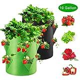 Homealexa Erdbeere Pflanzsack, Pflanzen Tasche Pflanzbeutel 40L/10 Gallonen mit Griffen und seitliche Wachstumstaschen, dauerhaft Atmungsaktiv Grow Tasche für Gemüse Erdbeeren, 2 Pack