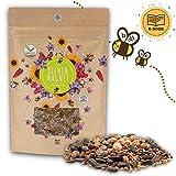 100g Blumenwiese Samen für eine bunte Bienenweide - Farbenfrohe & nektarreiche Wildblumensamen Mischung für Bienen & Schmetterlinge (inkl. GRATIS eBook)