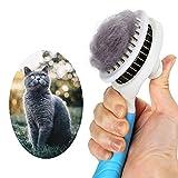 GOOING Katzenbürste, Katzenburste Selbstreinigend Zupfbürste Entfernt Unterwolle Hundebürste Hundebürste Katzenbürste Kurz bis Langhaar Geeignet Sanfte Katzenbürste Zupfbürste- (blau)