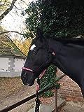 Knotenhalfter mit Strick für Pferde – gepolstert an Nase und Genick, ideal für Bodenarbeit, Pferdeausbildung, Training (schwarz-pink-grün)