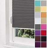 Home-Vision Premium Plissee Faltrollo ohne Bohren mit Klemmträger / -fix (Graphit, B25cm x H100cm) Blickdicht Sonnenschutz Jalousie für Fenster & Tür